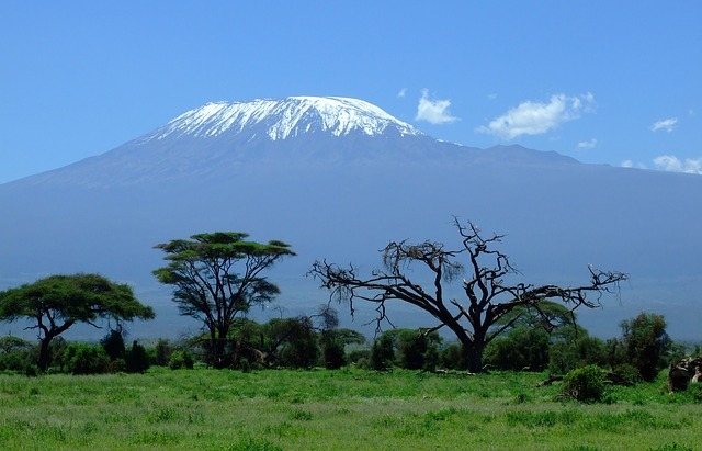 krása Kilimanjara