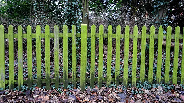 zelený plot