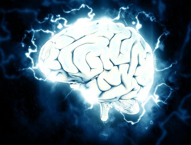 mozek, myšlení