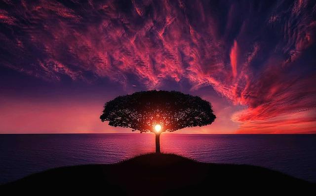 síla přírody, harmonie