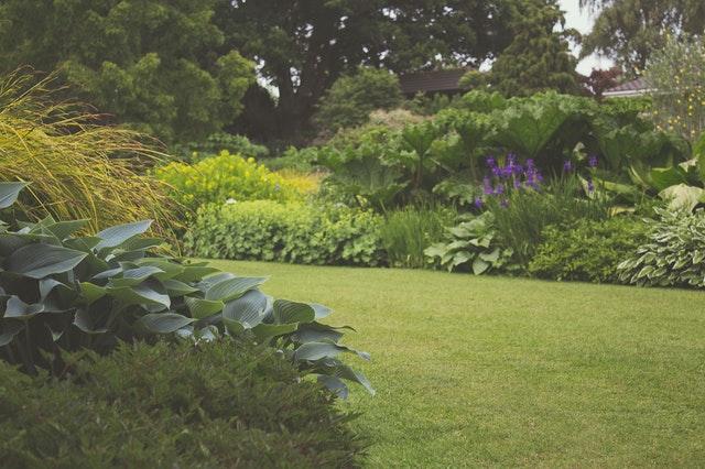 Udržovaná zahrada